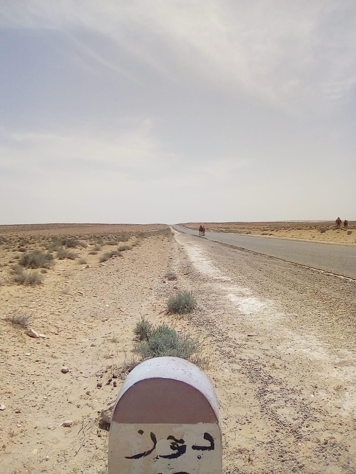 PROGRAMMA VIAGGIO IN TUNISIA 2020